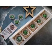 Набор 5 корпусных конфет камуфляж